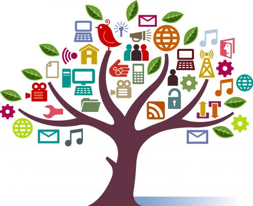 các nhánh social media