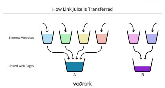 tìm hiểu về link juice